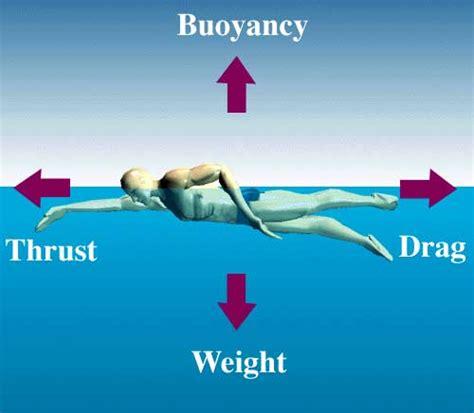 Tutorial Belajar Berenang | tutorial belajar berenang dengan mudah 530260