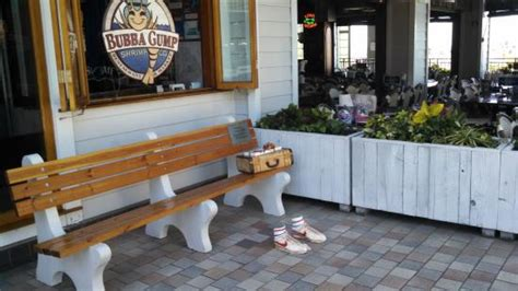 bubba gump bench the bench with running shoes a suitcase and a box of