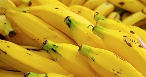 usaha keripik pisang omzetnya capai puluhan juta