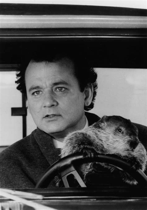 groundhog day the musical groundhog day the musical is in the works for broadway