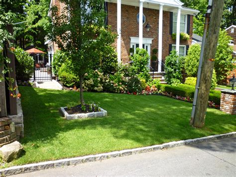 common front yard trees front yard landscaping ideas