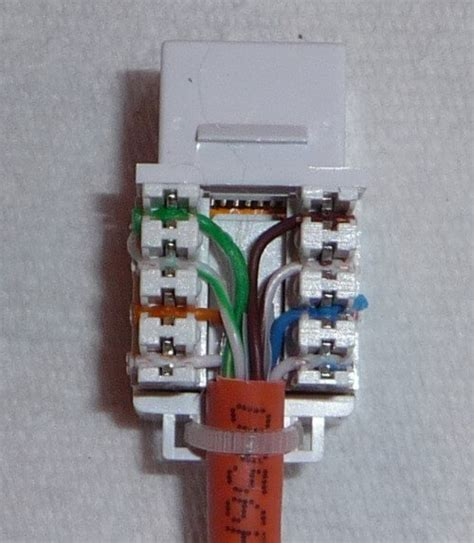 cat6 wiring diagram wall plate cat6 wiring diagram wall plate wiring diagrams
