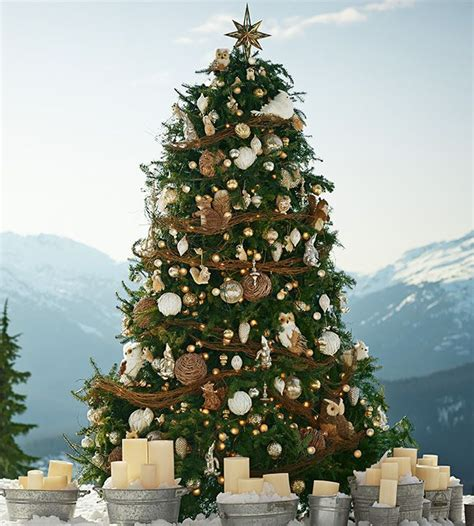 pottery barn christmas christmas 2014 pinterest