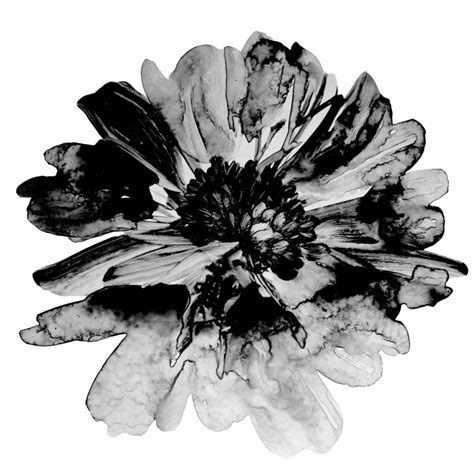Flower Rubiah flowers watercolor brush for photoshop