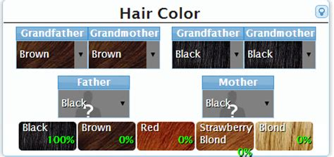 baby hair color calculator what will your baby s hair color be new center