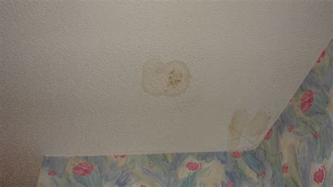 Water On Ceiling by Water Spots On Ceiling To Be Fixed