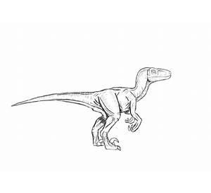 velociraptor coloring page free printable coloring pages - Velociraptor Coloring Page