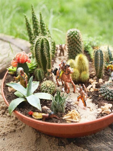 6 langkah mudah menanam kaktus di pot mungil rumah dan gaya hidup rumah
