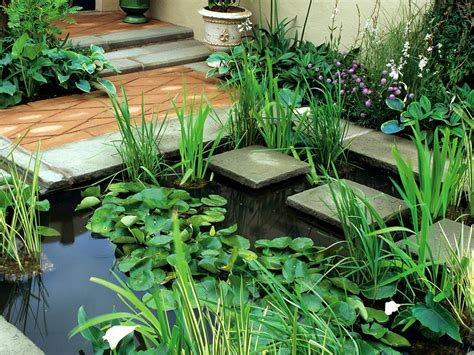 small water garden ideas water features for small backyards and gardens hgtv