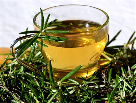 Detox Drinks With Rosemary by Rosemary Herbal Tea Gaia Therapeat