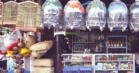 Harga Pakan Burung Topsong daftar harga pakan burung kicau terbaru berkualitas saat