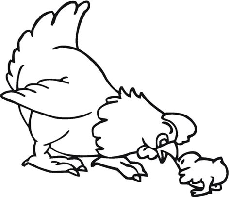 spring baby animals coloring pages spring baby animals coloring pages