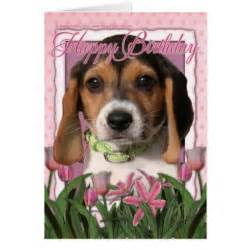beagle birthday card happy birthday pink tulips beagle puppy greeting cards