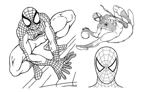 coloring pages print out free printable spiderman coloring pages for kids