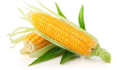 new year 7 vegetables corn crowned king of vegetables in new york state home
