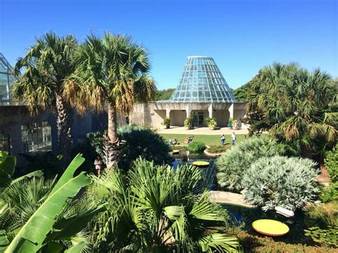 5 Tips For Your Trip To The San Antonio Botanical Garden Botanical Garden San Antonio