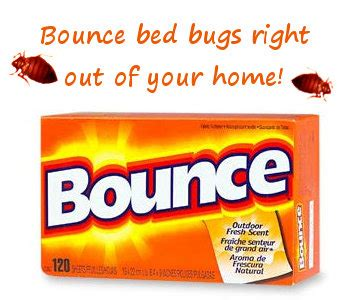 do dryer sheets repel bed bugs do dryer sheets repel bed bugs 28 images bounce dryer