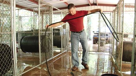 building a kennel boarding kennel design www imgkid the image kid has it