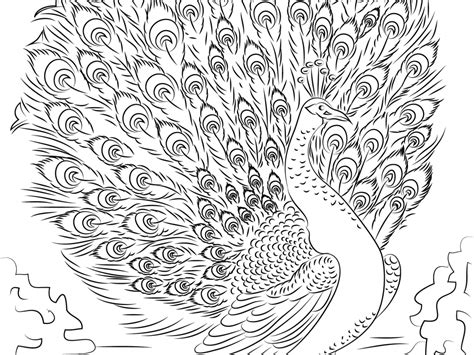 52 Free Printable Advanced Coloring Pages Advanced Skill Coloring Pages Advanced