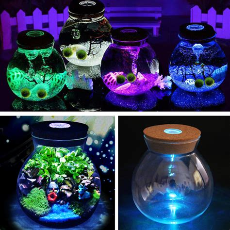 Diy Led Decoration by Diy Moss Micro Landscape Glass Bottle With Led Light