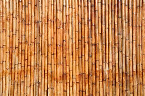 Interior Design Hawaiian Style Bamboo Background Stock Photo Colourbox