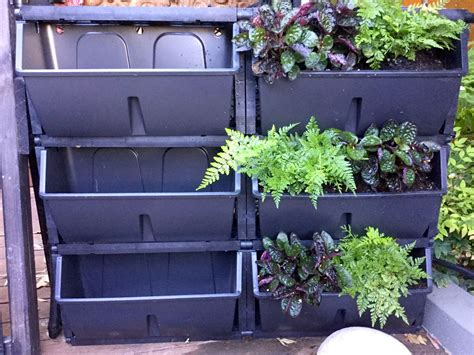 vertical gardens and roof gardens perth western australia