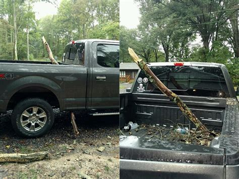 f150 aluminum bed f 150 aluminum bed speared by tree branch our forum reacts f150online com