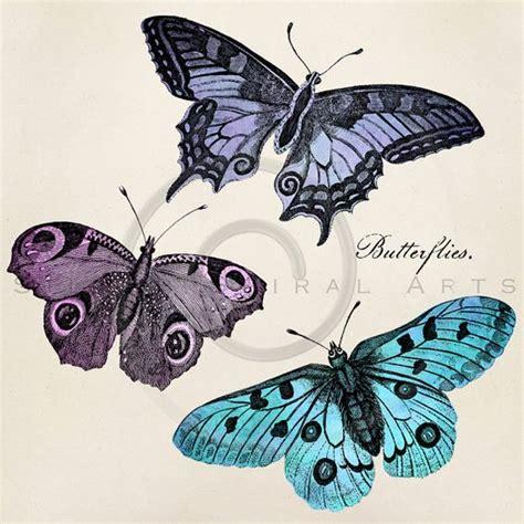 Instan Butterfly vintage butterfly illustration printable butterflies 1800s antique butterfly print instant