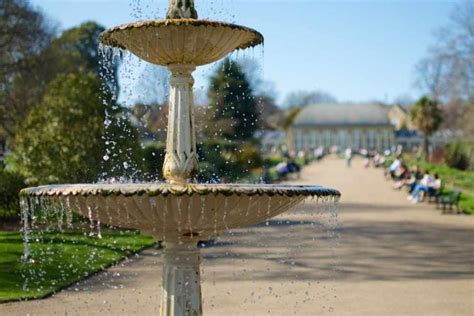 Botanical Gardens Sheffield Events The Top 10 Things To Do And See In Sheffield