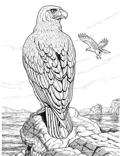realistic eagle coloring pages eagles lions of the sky coloring pages