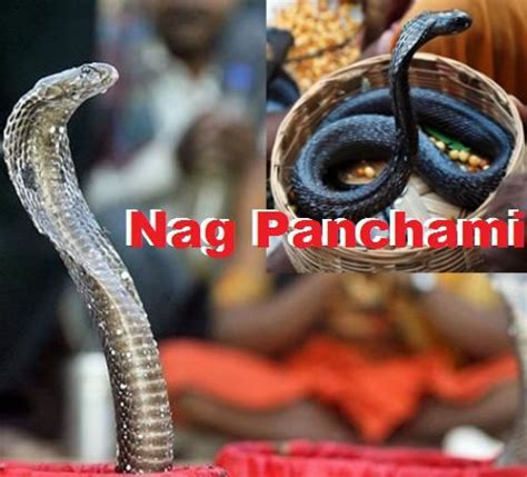 ? Top 15 Nag Panchami images, greetings and pictures for