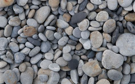the pebble in my pebbles wallpapers pictures images
