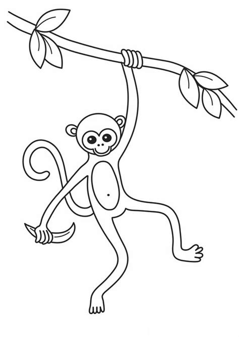 monkey kingdom coloring page how to draw monkey king