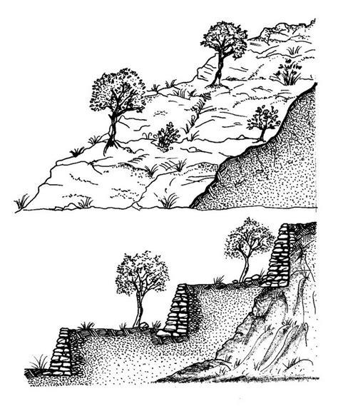 come fare un terrazzamento pangea agricoltura agriculture