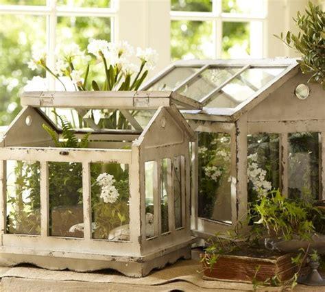 Floor And Decor Morrow terrariums modern terrariums by pottery barn