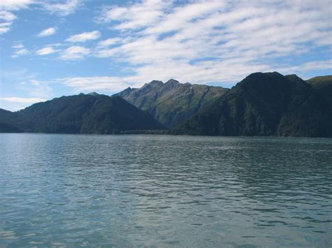 resurrection bay cruise