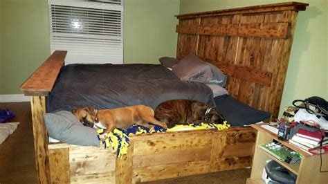 dog on bed handmade king size bed designed to lodge your furry friends
