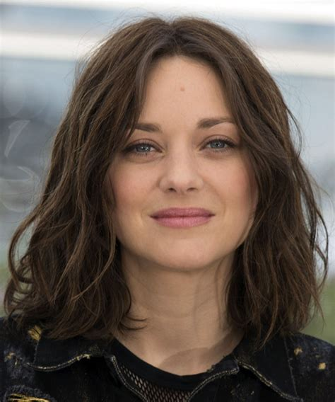 looking haircut specialist for women illinois marion cotillard medium wavy casual bob hairstyle dark