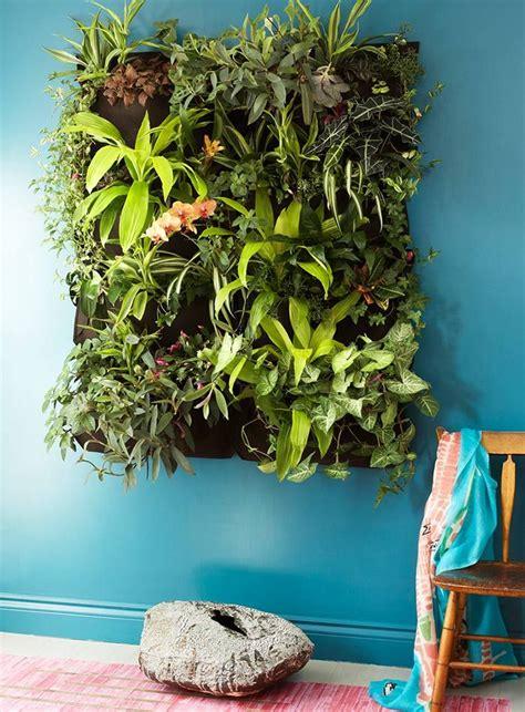 Indoor Vertical Garden Plants 10 Best Ideas About Indoor Vertical Gardens On