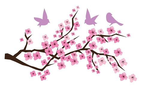 Owl And Tree Wall Stickers cherry blossom branch birds vinyl wall art fast ship