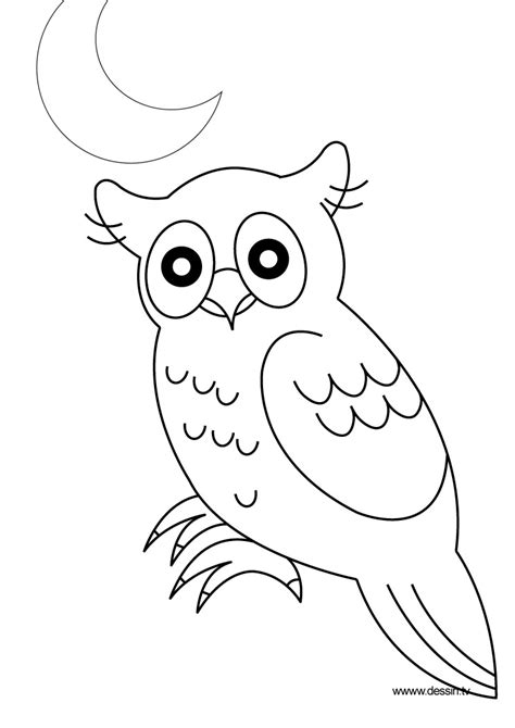 night animals coloring page free coloring pages of animals at night