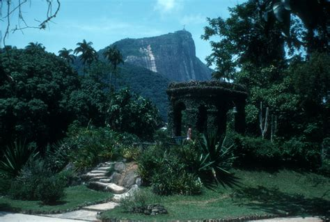 filerio botanical garden rio de janeirojpg wikimedia