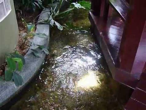 Lu Uv Untuk Kolam Ikan penapis kolam ikan fish pond filter