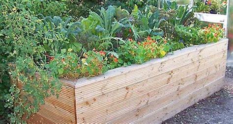schöner garten 12 best garten pflanzen images on gardening