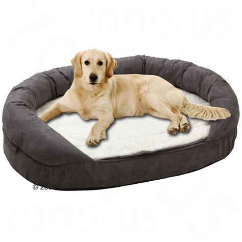 hunde betten camas para perros la mejor comodidad para nuestra mascota