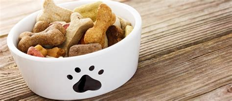 what is a puppy food best food for dogs 101 free food buying guide