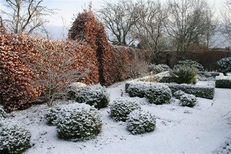 sichtschutz pflanzen garten 686 g 228 rten im winter zinsser gartengestaltung schwimmteiche