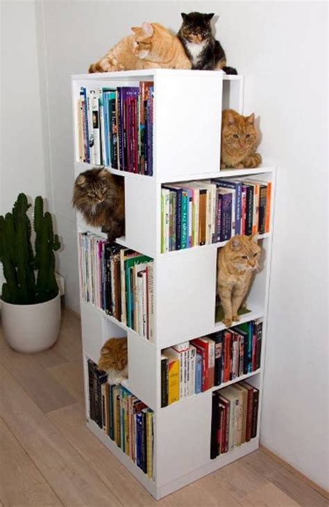 17 best images about kitty cat bookshelves on