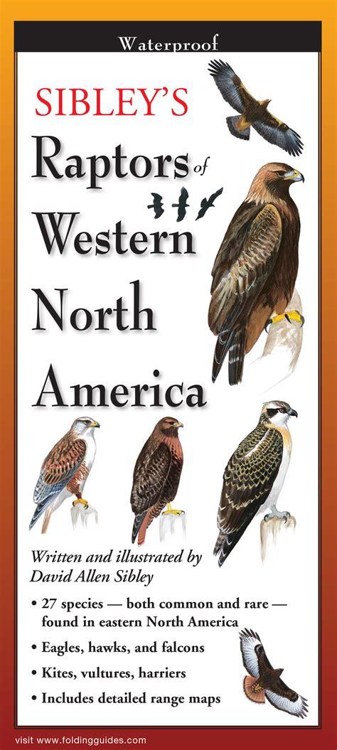 sibley s raptors of western n america foldingguides ebook steven m lewers associates sibley s raptors of western