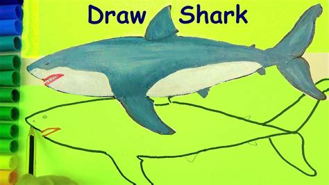 what color are sharks draw sharks coloring pages drawing for learn